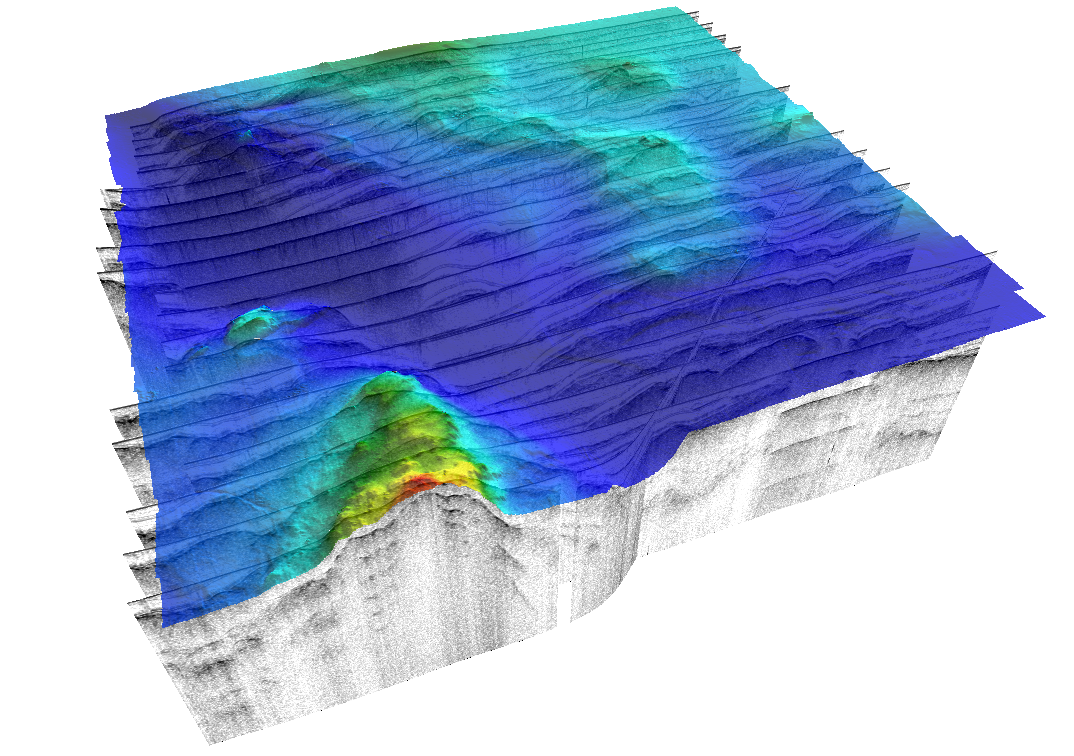 Meridata MDPS/3DViewer showing bathymetry surface on top of sub-bottom profiles